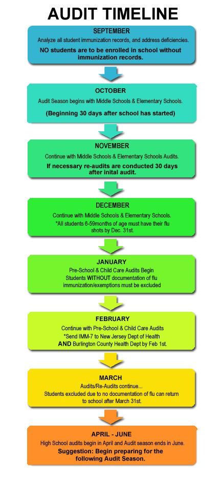 School Immunizations Audit Timeline
