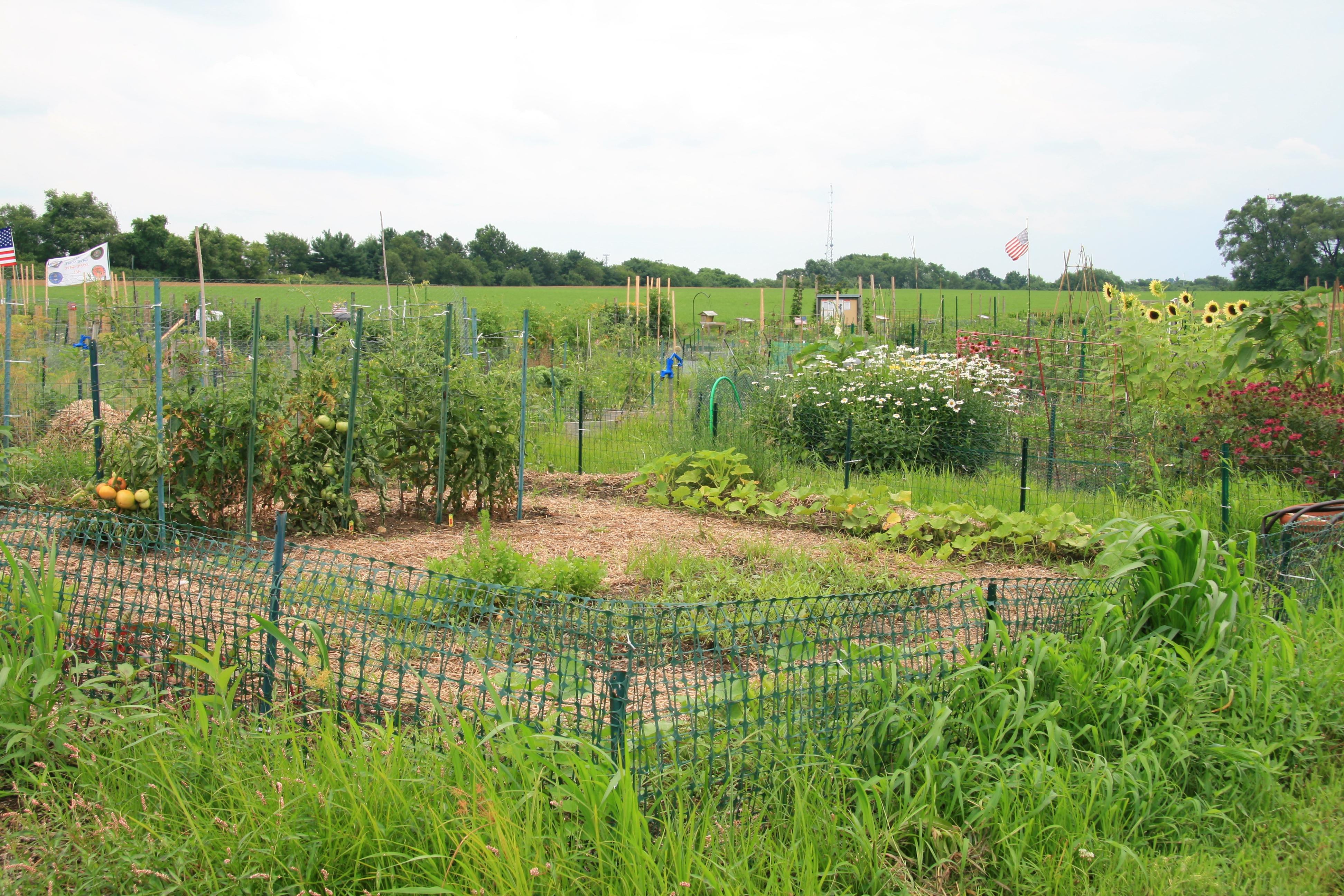 Master gardener burlington county nj garden ftempo for The gardener burlington