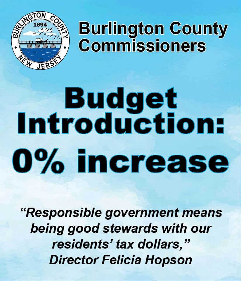 Budget Graphic for Website