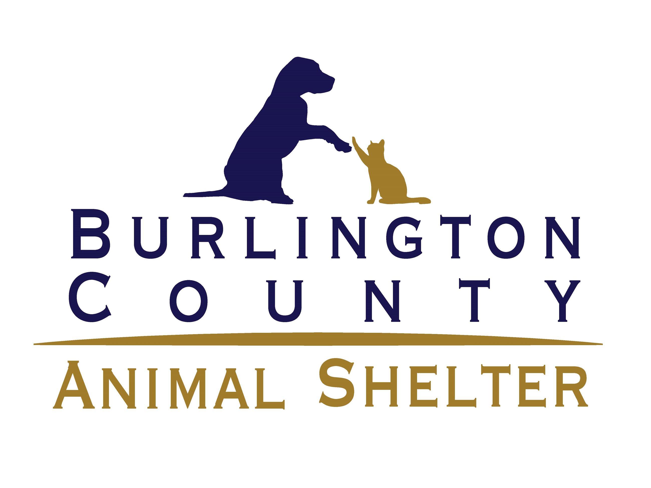 Animal Shelter | Burlington County, NJ - Official Website